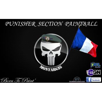 Punisher Section paintball
