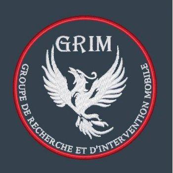 Groupe de Recherche et d'Intervention Mobile